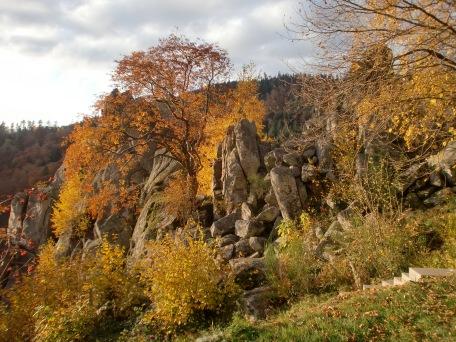 Schwarzwald 10
