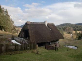 Schwarzwald 13