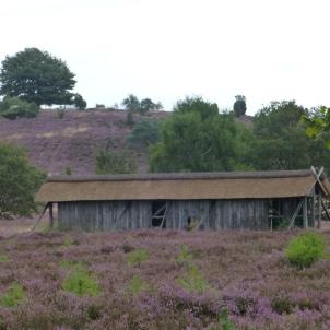 Lueneburger Heide 14