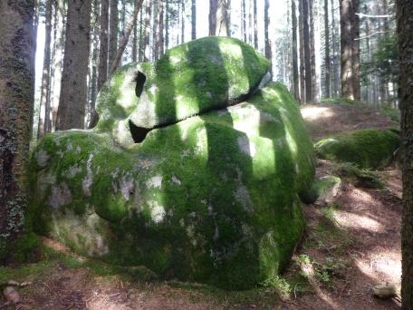 Schwarzwald 32